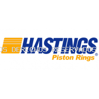 HASTINGS PISTON RING