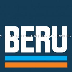 Válvula, sistema de arranque por llama BERU: 0210243125