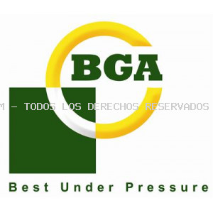 Termostato, refrigerante BGA: CT5527