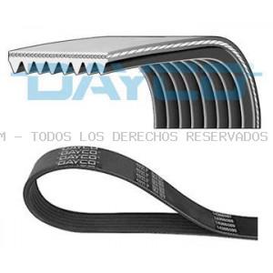 Correa trapecial poli V DAYCO: 8PK1070HD