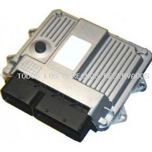 Unidad de control, mando del motor HOFFER: 7540036