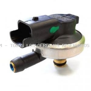 Válvula de inyección HOFFER: H75117009