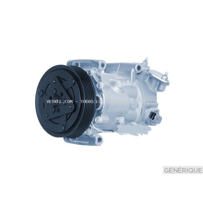 Compresor, aire acondicionado DELPHI: TSP0159861