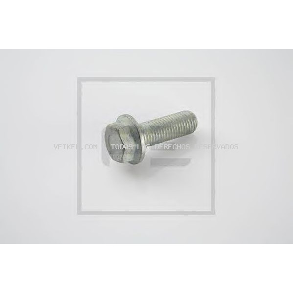 Tornillo PE Automotive: 03006100A