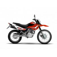 SKUA 150 V6